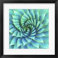 Framed Succulente VI