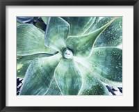 Framed Green Tropical Succulent VII