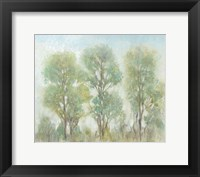 Framed Muted Trees I