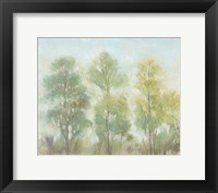 Framed Muted Trees II