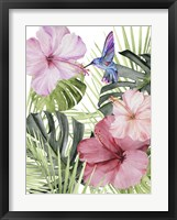 Framed Hibiscus & Hummingbird I