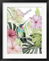 Framed Hibiscus & Hummingbird II