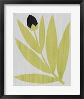 Framed Flower Cutting I