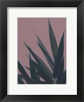Framed Bamboo Pink II