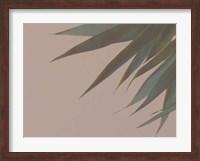 Framed Bamboo Pink III