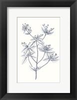 Framed Indigo Botany Study III