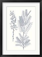 Framed Indigo Botany Study VII