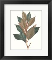 Framed Fall Foliage VII