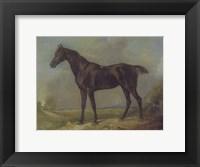 Framed Golding Constable's Black Riding-Horse