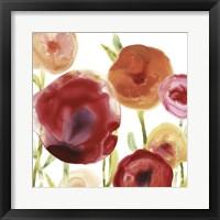 Framed Poppy Patch III