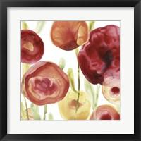 Framed Poppy Patch IV