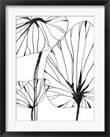 Framed Linear Tropics IV