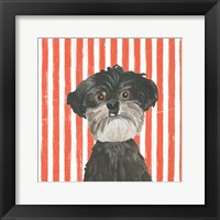 Framed Parlor Pooches I