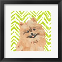 Parlor Pooches IV Framed Print