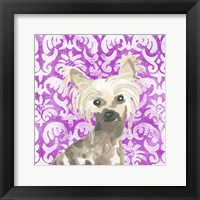 Framed Parlor Pooches IX