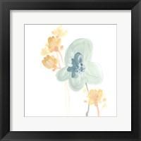 Framed Petite Petals I