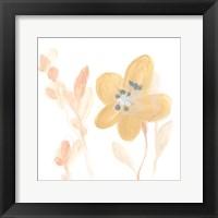 Framed Petite Petals III