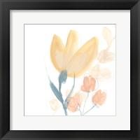Framed Petite Petals VIII