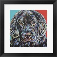 Framed Canine Buddy I