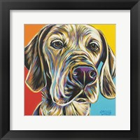 Framed Canine Buddy II