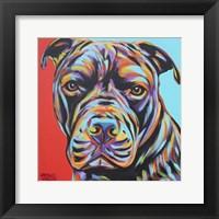 Framed Canine Buddy III