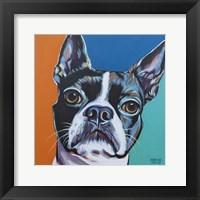 Framed Dog Friend III