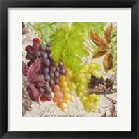 Framed Vintage Fruits II Grapes