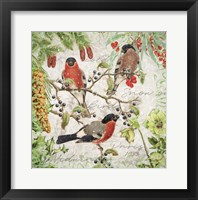 Framed Winter Birds Bullfinches