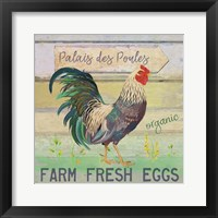 Framed Egg Farm Rooster