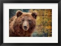Framed Big Game Bear