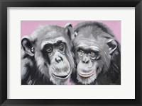 Framed Loving Chimps
