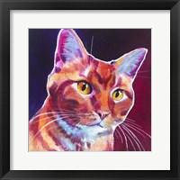 Framed Cat - Linus