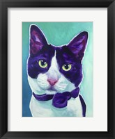 Framed Cat - Sniffles