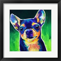 Framed Chihuahua - Jack