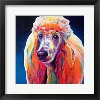 Framed Poodle - Hans
