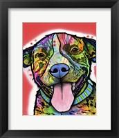 Framed Smiling Pit Bull Zoey