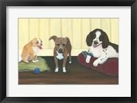 Framed Three Pups