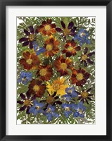 Framed Dried Flowers 1