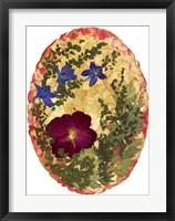 Framed Dried Flowers 3