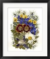 Framed Flower Fantasy 12