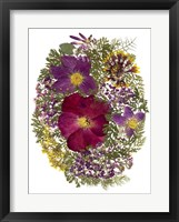 Framed Dried Flowers 13