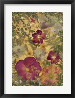 Framed Dried Flowers 22