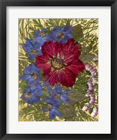 Framed Dried Flowers 24