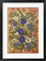 Framed Dried Flowers 25