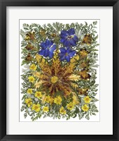Framed Dried Flowers 26