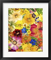 Framed Dried Flowers 27