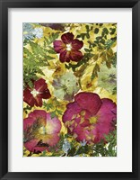 Framed Dried Flowers 28