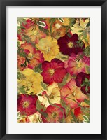 Framed Dried Flowers 30