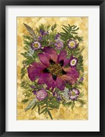 Framed Dried Flowers 33