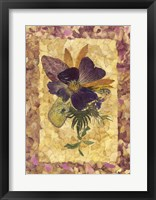 Framed Dried Flowers 34